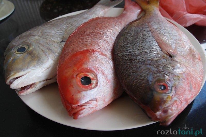 Nasze rybki