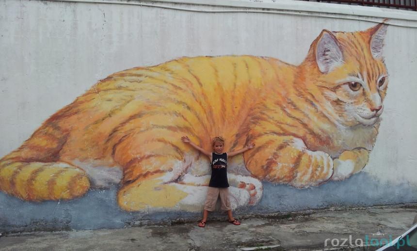 Wielki kot - mural w Georgetown / fot. rozlatani.pl